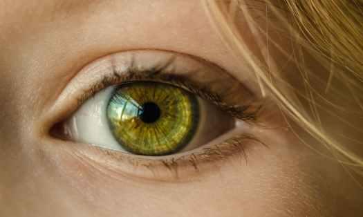 people face child eye